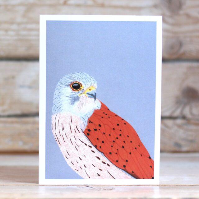 BIRD Kestrel 2716 LIGHT