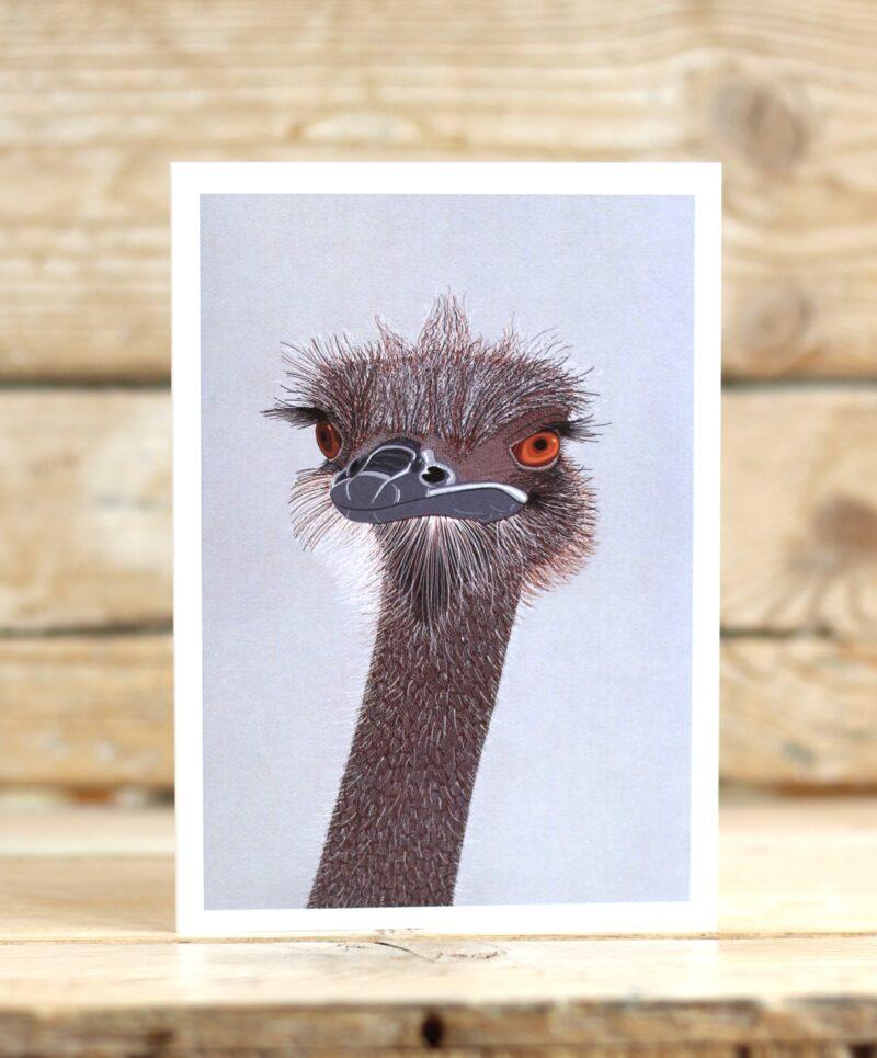 BIRD Ostrich Head 2705 LIGHT