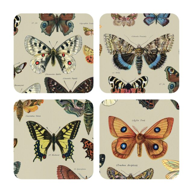 Biologica Butterflies Coaster Magpie