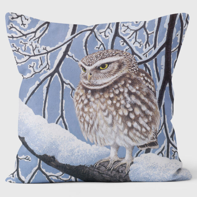 Robert Gillmor Little Owl Cushion WLC