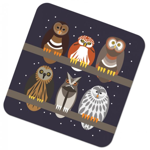 302930W i like birds 4 pack coasters OWLS
