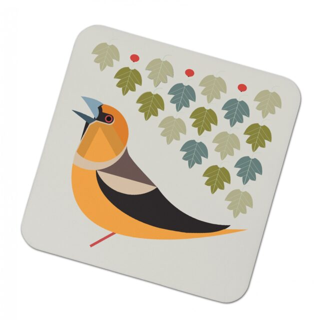 3029357 i like birds 4 pack coasters HAWFINCH