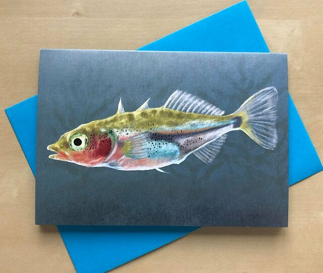 stickleback fish greetings card shown with blue envelope on a table