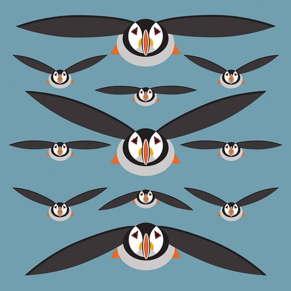 puffins greetings card