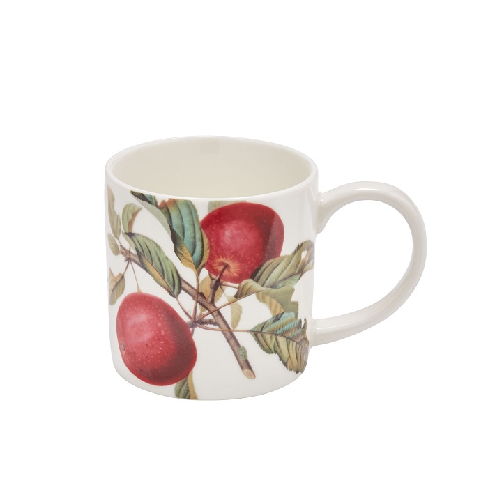 rhs fruits mug showing red fruit with leaves against a white background