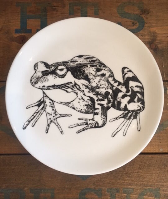 Frog plate showing frog in black drawn against white plate