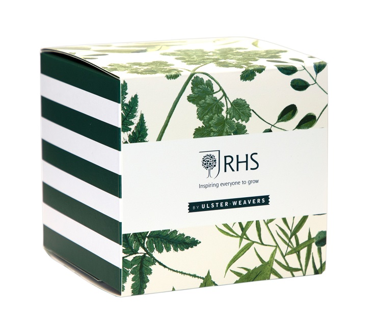 rhs foliage mug in matching gift box
