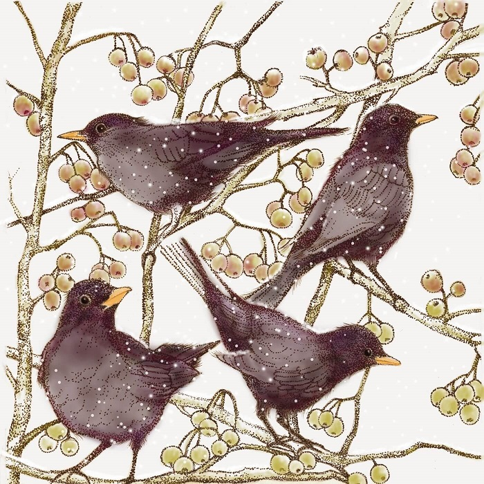 blackbirds greetings card by Fay's Studio shows four blackbirds in a bush with pale berries