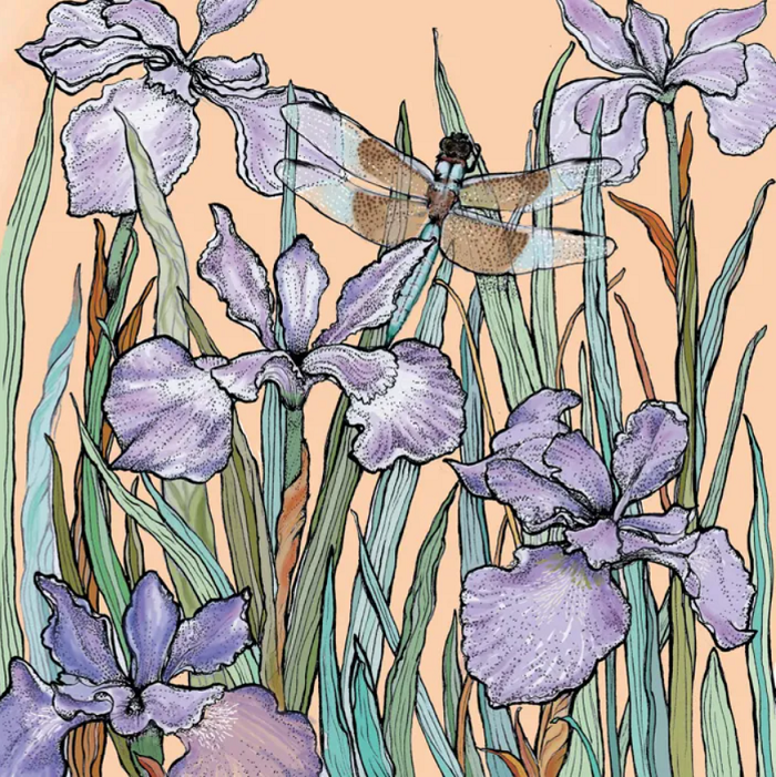 Dragonfly and Bearded Iris Print by Fay's Studio