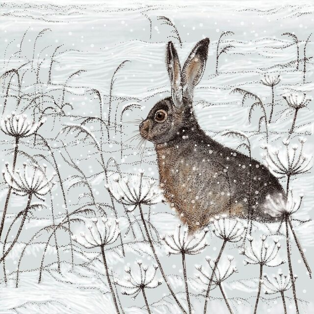 hare greetings card by Fay's Studio showing a dark hare facing left against a snowy field