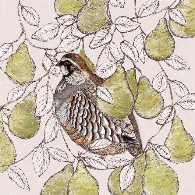 partridge and pears greetings card by fays studio shows a partridge sitting amongst green pears