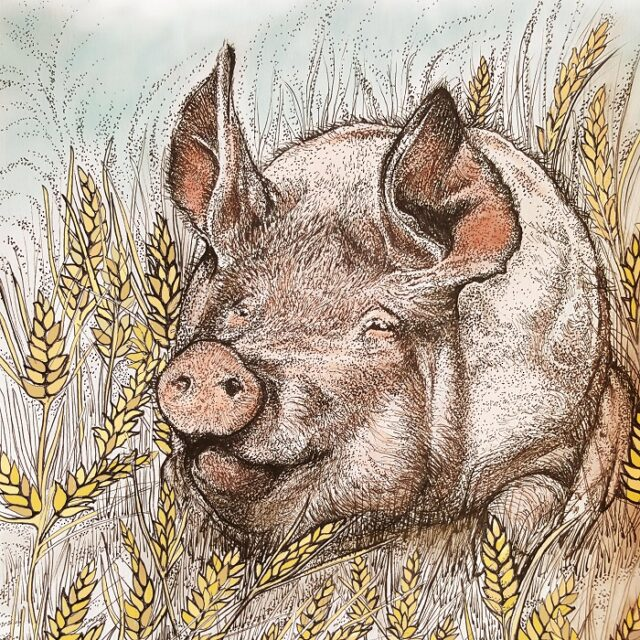 Pig and Wheat Print by Fay's Studio