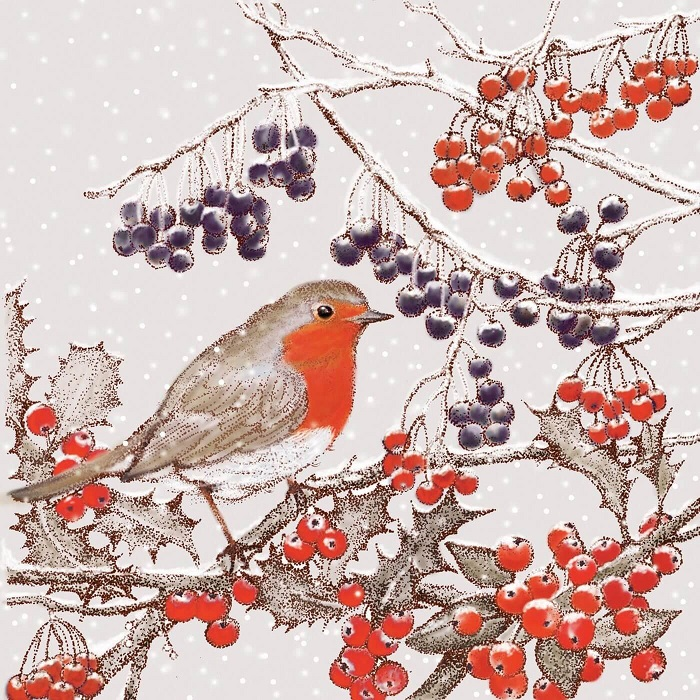 red robin greetings card by Fay's Studio shows a robin facing right sitting in a bush with red holly berries and dark berries