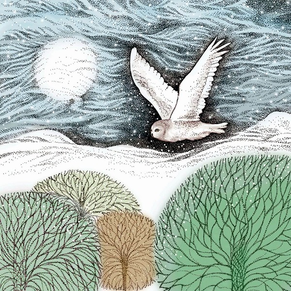 snowy owl greetings card by fay's studio shows a white owl flying over trees against a pale blue sky with moon