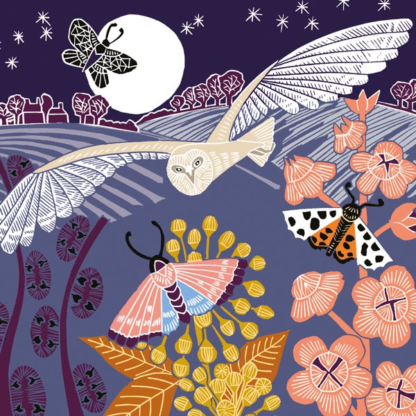 owl at night card shows barn owl with wings outspread against night sky with moths