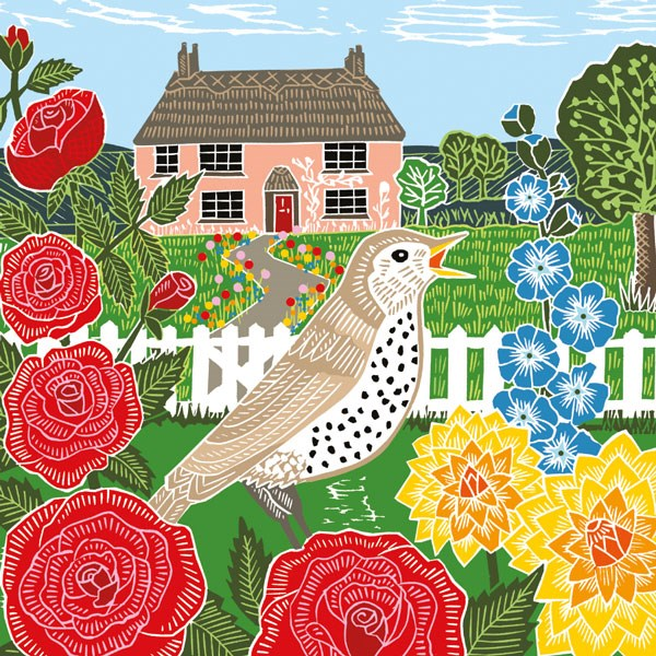 thrush singing with roses to left and a cottage behind