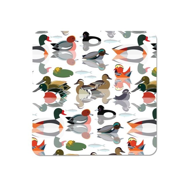 ducks placemats