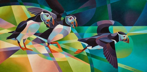 territorial puffins card shows two puffins chasing a third off their patch