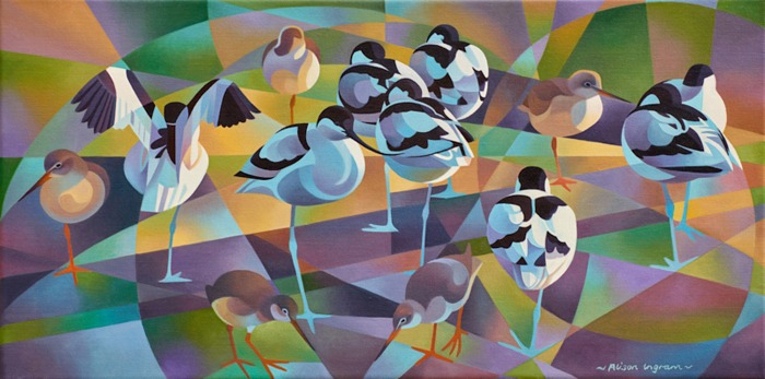 avocets and redshanks card