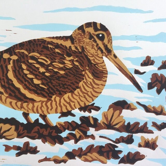 Woodcock linocut print shows the bird in brown with long beak and feet in foliage