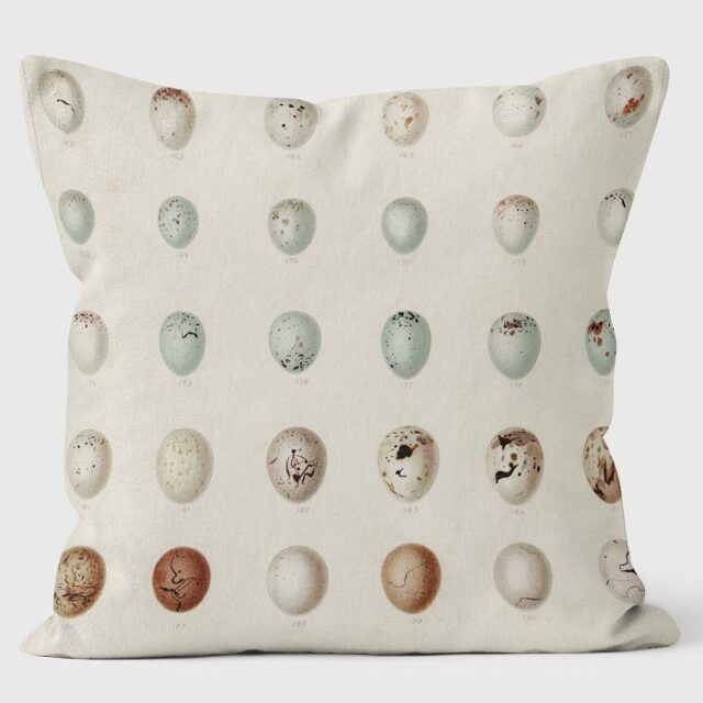 rows of eggs cushion shows thirty small eggs in muted shades of blue and brown against a neutral background