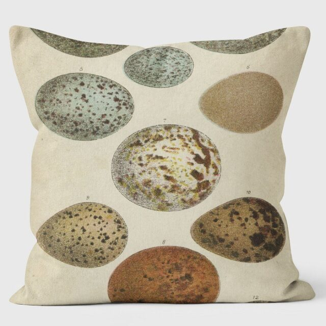 speckled eggs cushion shows large speckled eggs in muted blues and browns against a neutral background